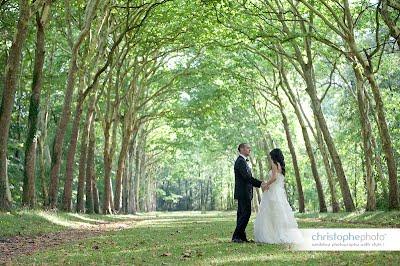 цена за свадебные туры во Францию стоимость