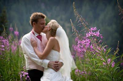 цена за свадебный тур в Болгарию стоимость