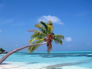 Мальдивы 2